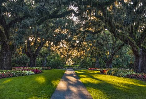 Brookgreen Gardens in Myrtle Beach, South Carolina, SC, USA