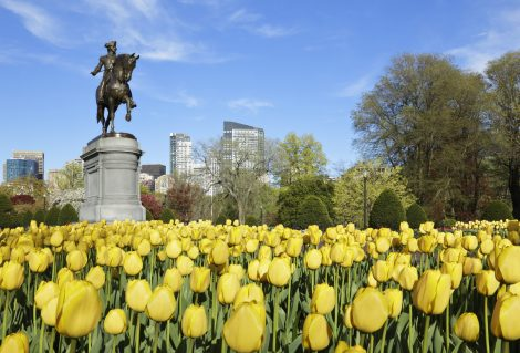 George Washington statue (c. 1859) in the public gardens (Boston, Massachusetts).